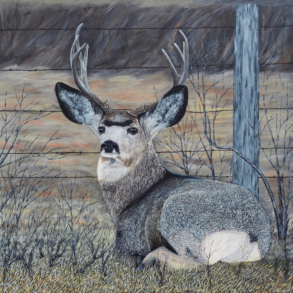 Mule Deer in the Brush - Brian Sloan Artist